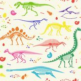 Dinosaur Fossils, Eggs, Bones Skeletons. Stock Photography