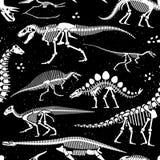Dinosaur Fossils, Eggs, Bones Skeletons. Royalty Free Stock Images