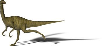 Dinosaur Gallimimus Stock Photography