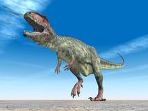 Dinosaur Giganotosaurus Stock Image