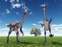 Dinosaur Gigantoraptor Fotografia Royalty Free