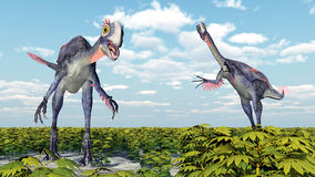 Dinosaur Gigantoraptor Stock Photography