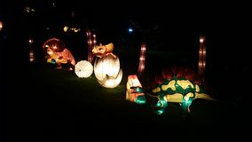 Dinosaur Handmade Chinese Lantern Stock Photography