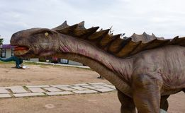 Dinosaur head close up. A dinosaur head close up royalty free stock images
