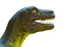 Dinosaur head isolated. Closeup dinosaur head isolated on white Stock Images