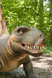 dinosaur head s arkivfoto