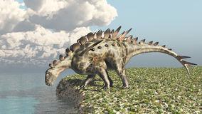 Dinosaur Huayangosaurus Royalty Free Stock Image