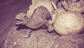 Dinosaur i jajka Zdjęcie Stock