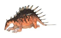 Dinosaur Kentrosaurus Stock Image