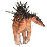 Dinosaur Kentrosaurus Stock Photography
