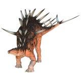 Dinosaur Kentrosaurus Stock Photo
