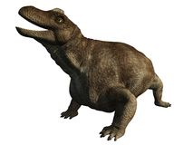 Dinosaur - Keratocephalus Stock Photos
