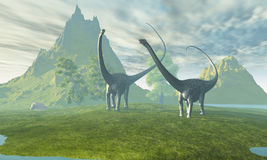 Dinosaur Land. Two Diplodocus dinosaurs walk together in the afternoon in the prehistoric age Royalty Free Stock Photos