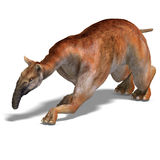Dinosaur Macrauchenia. Funny and curios dinosaur Macrauchenia. 3D render with clipping path and shadow over white Royalty Free Stock Images