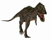 Dinosaur Majungasaurus Stock Photography