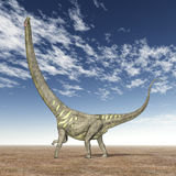 Dinosaur Mamenchisaurus Stock Images