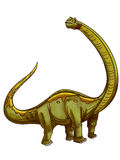 Dinosaur:mamenchisaurus. Dinosaur:a mamenchisaurus is stretching out his neck to see in the distance Stock Photography