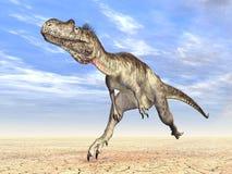 Dinosaur Megalosaurus Stock Photos