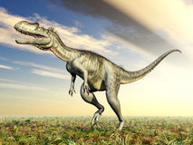 Dinosaur Megalosaurus Stock Photography