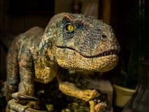 Dinosaur model close up on face. Focus on eye Royalty Free Stock Photo