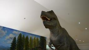 Dinosaur stock footage