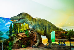 Dinosaur. Model in a museum royalty free stock images