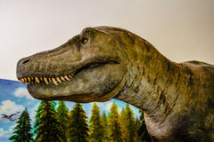 Dinosaur. Model in a museum Royalty Free Stock Photo