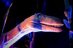 Dinosaur model in the pink, purple and blue environment. Selective focus royalty free stock images
