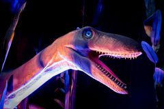 Dinosaur model in the pink, purple and blue environment. Selective focus royalty free stock image