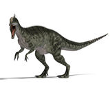 Dinosaur Monolophosaurus. Giant jurassic beast. 3D render with clipping path and shadow over white Stock Photos