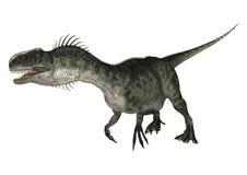 Dinosaur Monolophosaurus Royalty Free Stock Image