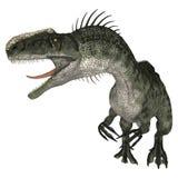 Dinosaur Monolophosaurus Stock Photos
