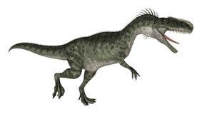 Dinosaur Monolophosaurus Stock Photography
