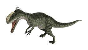 Dinosaur Monolophosaurus Royalty Free Stock Photography