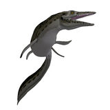 Dinosaur Mosasaur Royalty Free Stock Photography