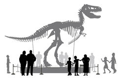 Dinosaur museum. Editable vector silhouettes of people looking at a Tyrannosaurus rex skeleton in a museum Royalty Free Stock Photography