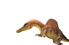 Dinosaur na bielu Obraz Royalty Free