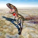 Dinosaur Nanotyrannus Stock Photos