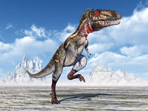 Dinosaur Nanotyrannus Royalty Free Stock Photography