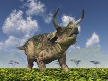 Dinosaur Nasutoceratops in a landscape. Computer generated 3D illustration with the dinosaur Nasutoceratops in a landscape Royalty Free Stock Photo