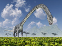 Dinosaur Omeisaurus. Computer generated 3D illustration with the dinosaur Omeisaurus Royalty Free Stock Images