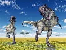 Dinosaur Pachycephalosaurus Stock Photos