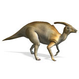 Dinosaur Parasaurolophus. 3D rendering with clipping path and shadow over white Royalty Free Stock Photo