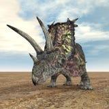 Dinosaur Pentaceratops Royalty Free Stock Photography