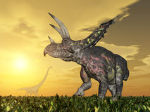 Dinosaur Pentaceratops Stock Photography