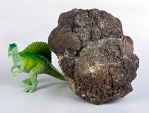 Dinosaur Poop. Stock Photo