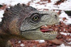 Dinosaur portailt. Ferocious  dinosaur portrait at Rasnov Dino Parc, Brasov County, Romania Royalty Free Stock Photo