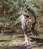 Dinosaur predator. A Carnotaurus in the prehistoric forest, big plastic replica model. Theropod Royalty Free Stock Images