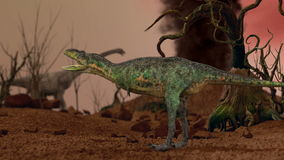 Dinosaur. Prehistoric Jungle, landscape, valley with Dinosaurs. Realistic animation and motion stock video footage
