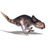 Dinosaur Protoceratops Royalty Free Stock Image